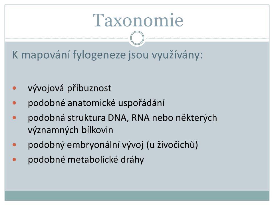 Taxonomie K mapování fylogeneze jsou využívány: vývojová příbuznost
