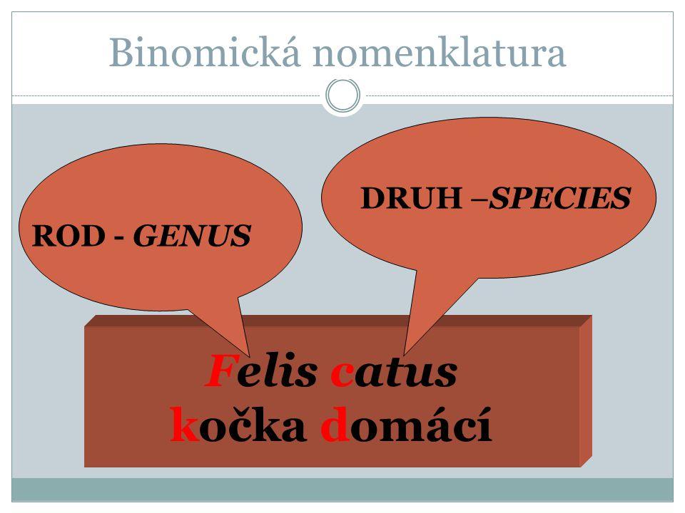 Binomická nomenklatura