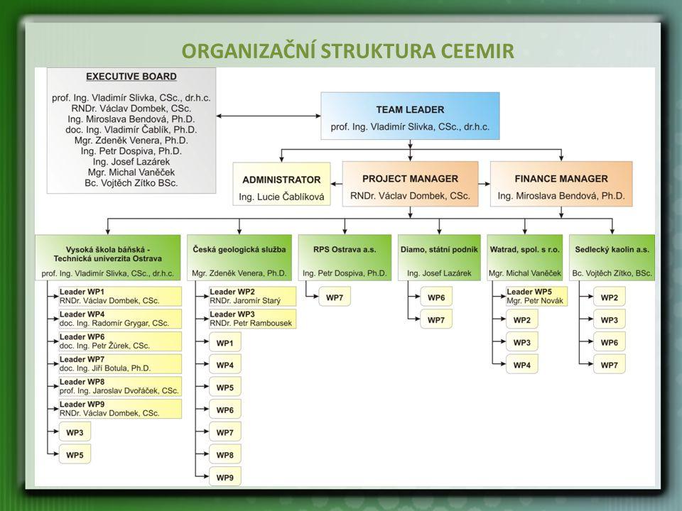 ORGANIZAČNÍ STRUKTURA CEEMIR