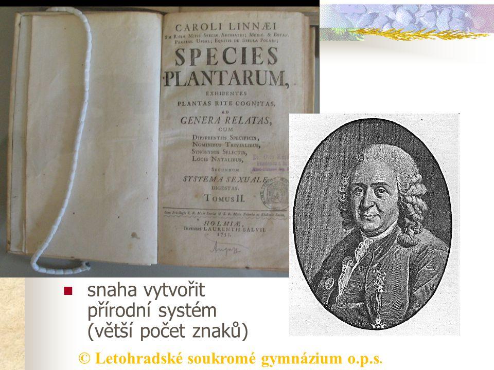 Botanický systém umělý systém -švédský lékař a přírodovědec