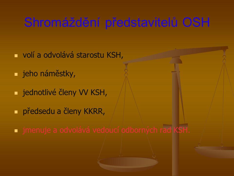 Shromáždění představitelů OSH