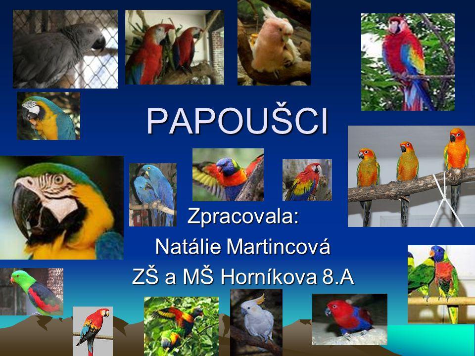 Zpracovala: Natálie Martincová ZŠ a MŠ Horníkova 8.A