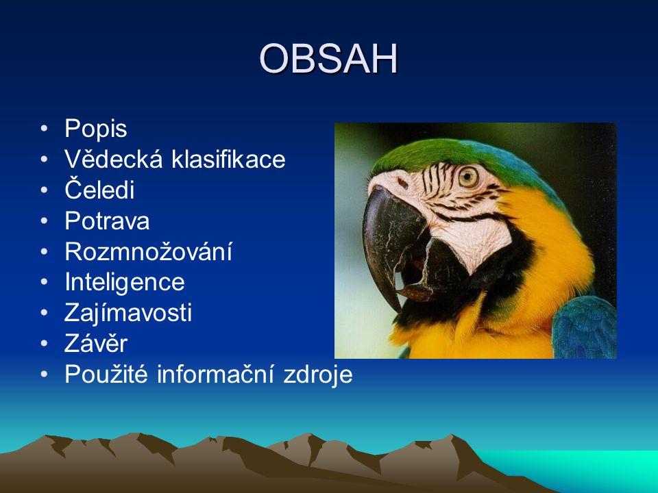 OBSAH Popis Vědecká klasifikace Čeledi Potrava Rozmnožování