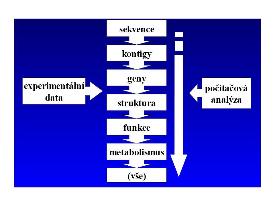 Schématické znázornění návaznosti bioinformatických procesů a metod.
