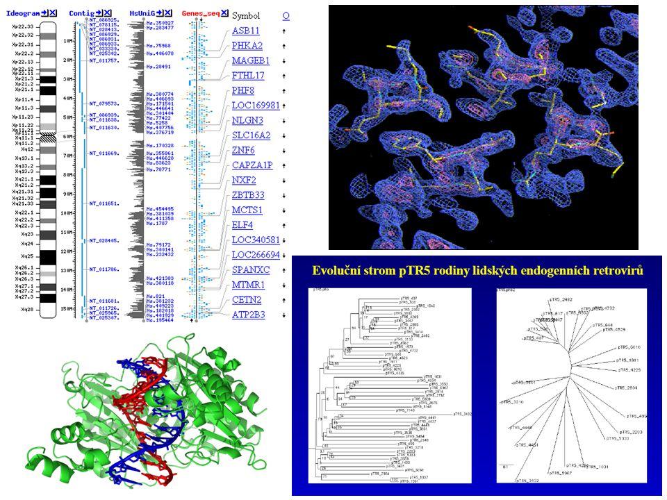 Ukázky výstupů bioinformatických aplikací.