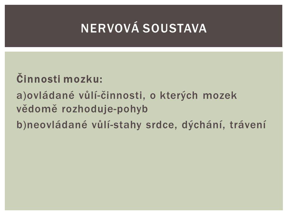 Nervová soustava Činnosti mozku: a)ovládané vůlí-činnosti, o kterých mozek vědomě rozhoduje-pohyb b)neovládané vůlí-stahy srdce, dýchání, trávení