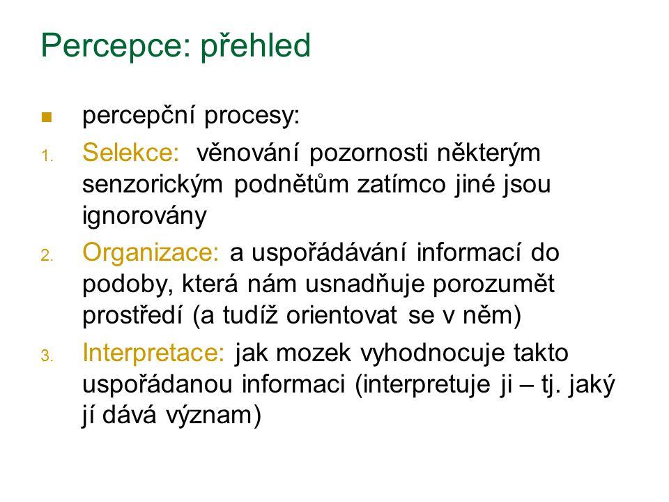 Percepce: přehled percepční procesy:
