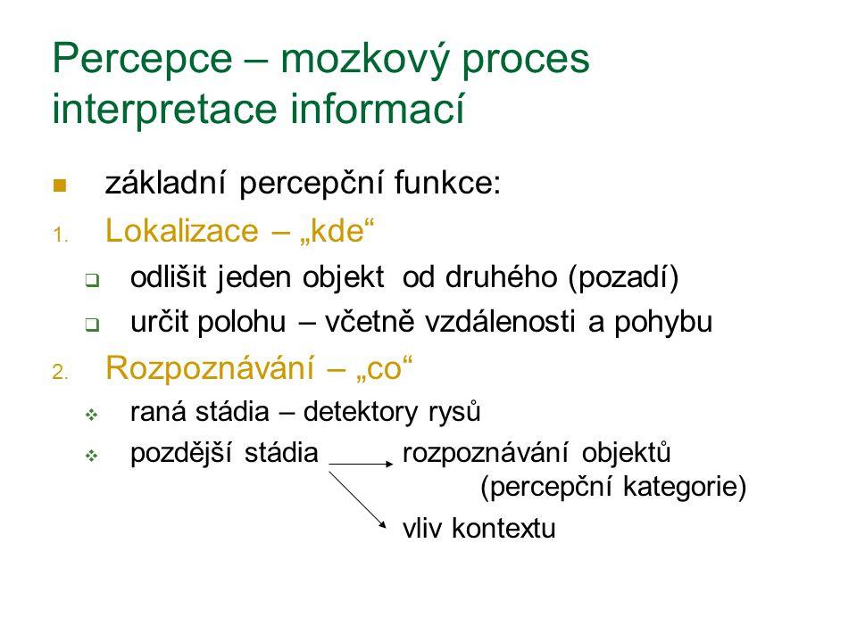 Percepce – mozkový proces interpretace informací