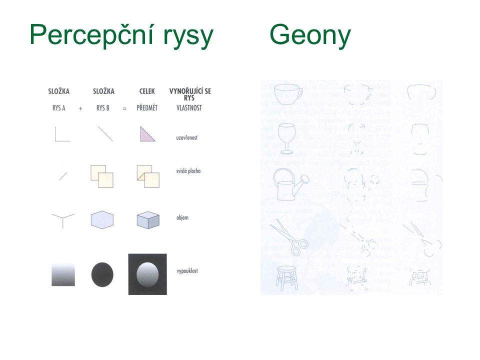 Percepční rysy Geony