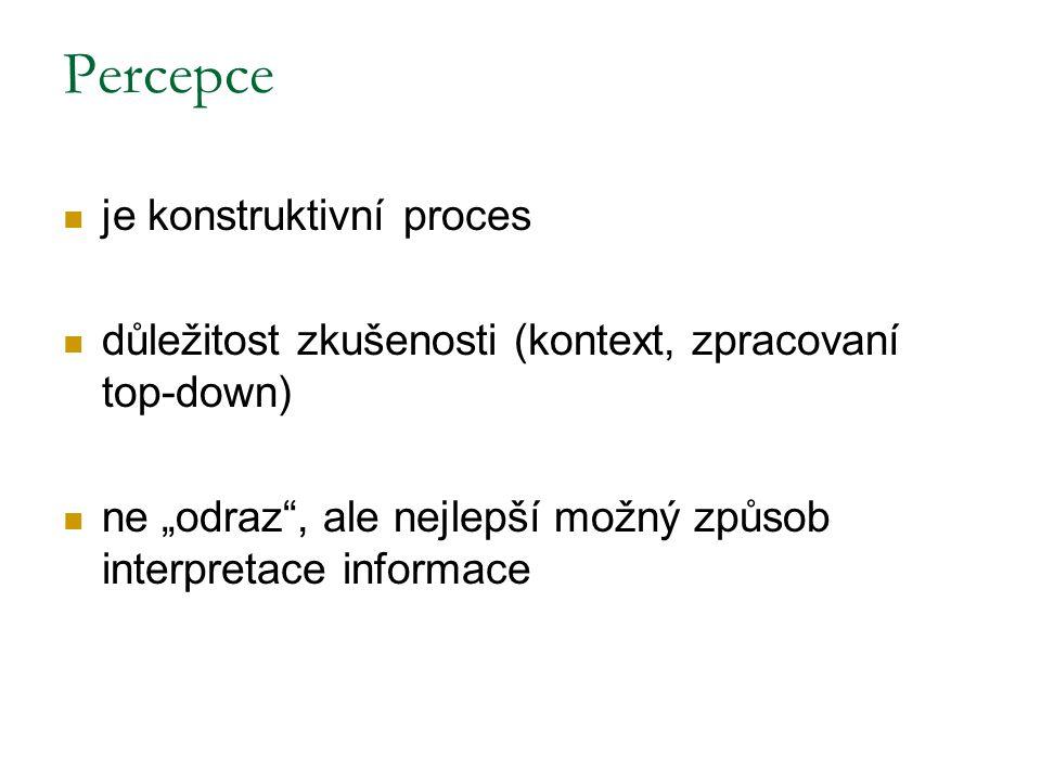 Percepce je konstruktivní proces