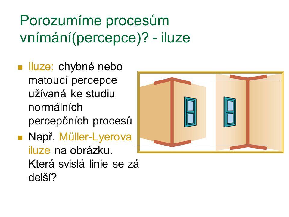 Porozumíme procesům vnímání(percepce) - iluze