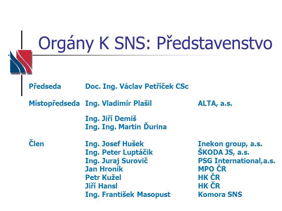 Orgány K SNS: Představenstvo