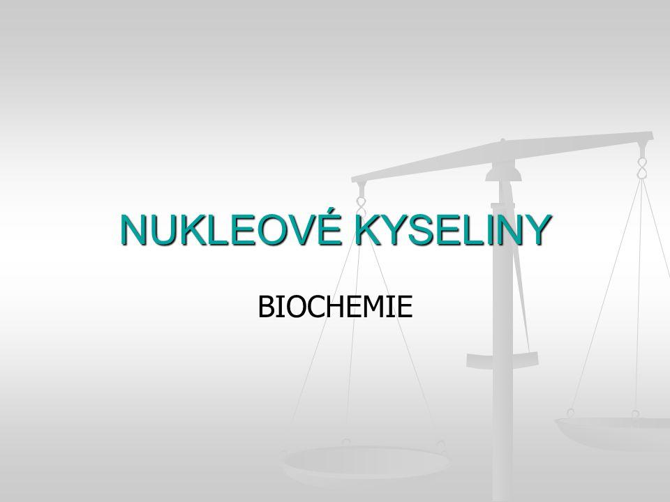 NUKLEOVÉ KYSELINY BIOCHEMIE