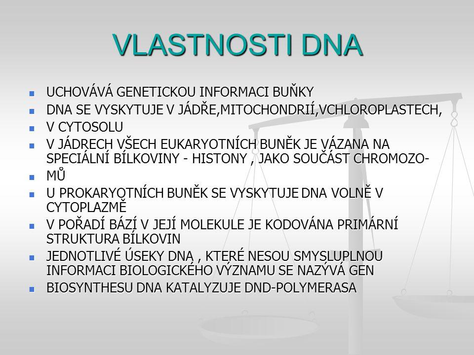 VLASTNOSTI DNA UCHOVÁVÁ GENETICKOU INFORMACI BUŇKY