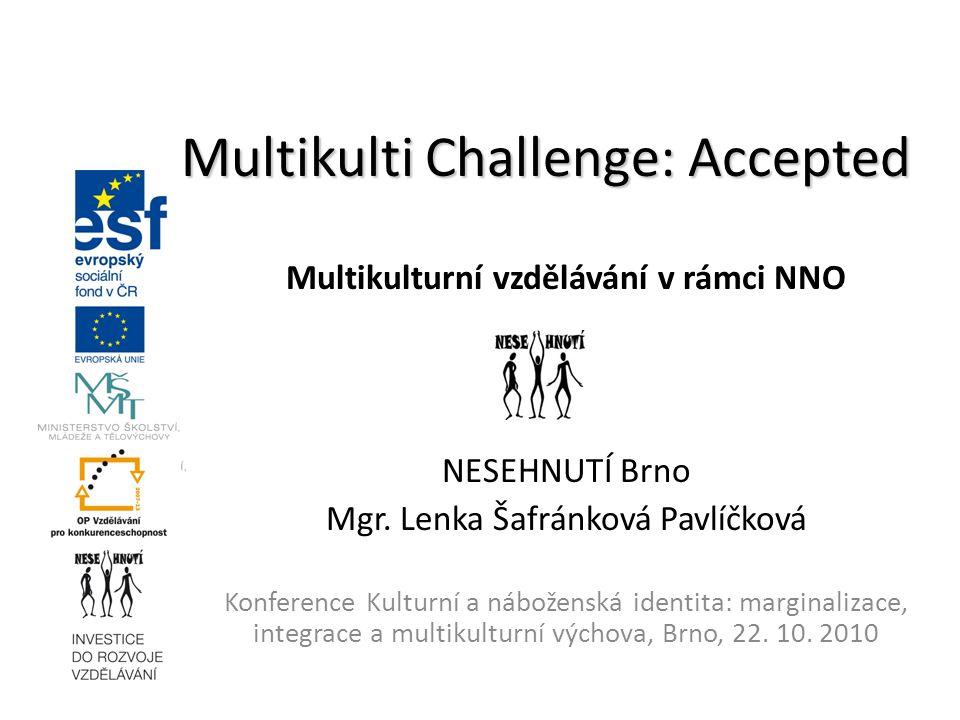 Multikulturní vzdělávání v rámci NNO