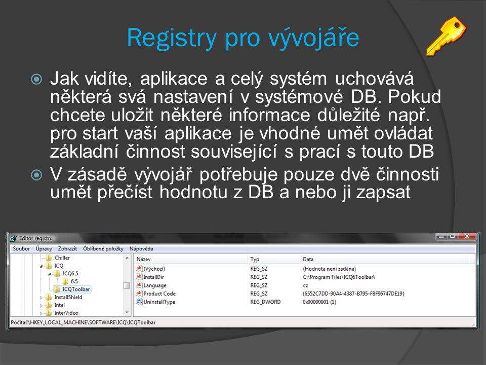 Registry pro vývojáře