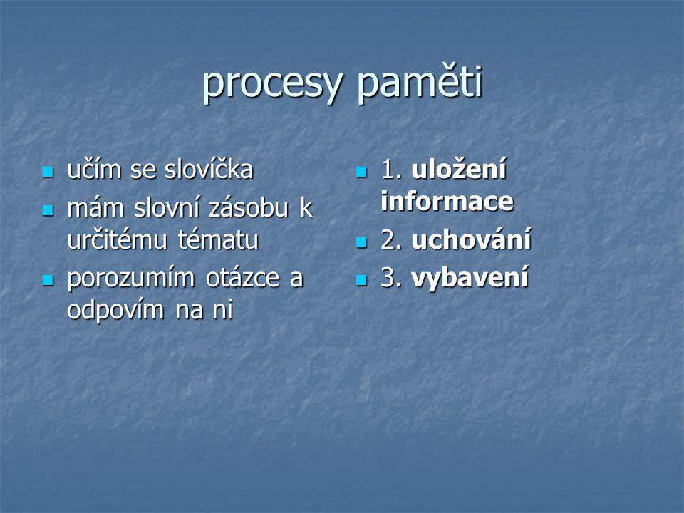 procesy paměti učím se slovíčka mám slovní zásobu k určitému tématu