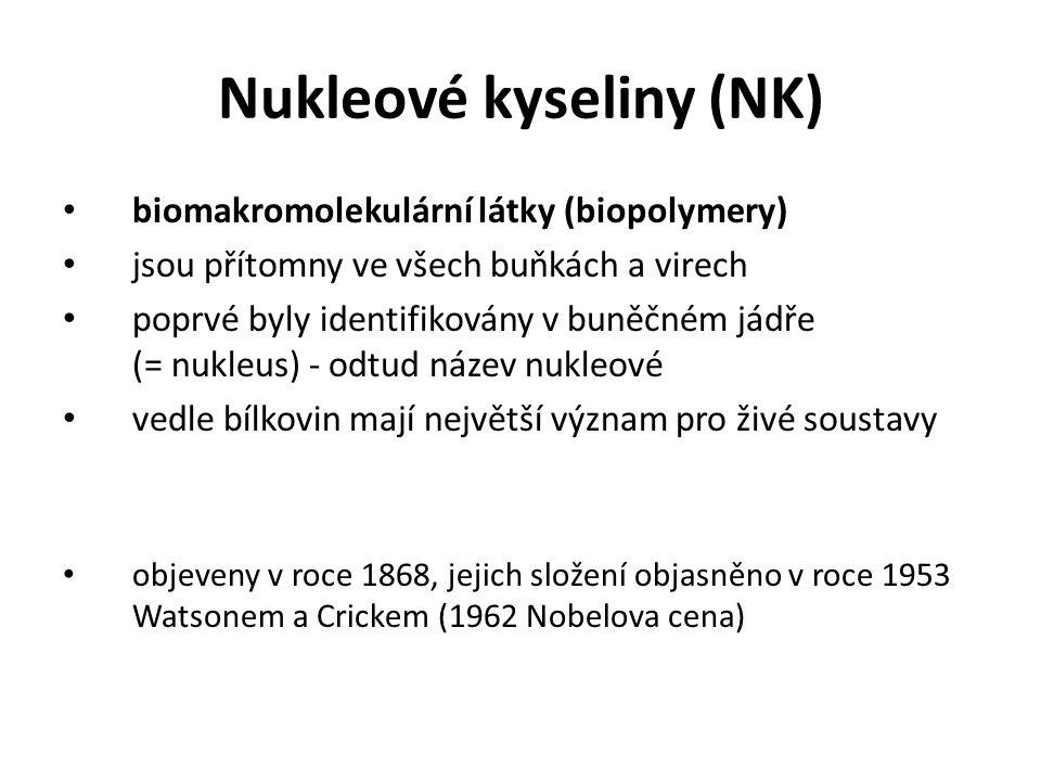 Nukleové kyseliny (NK)
