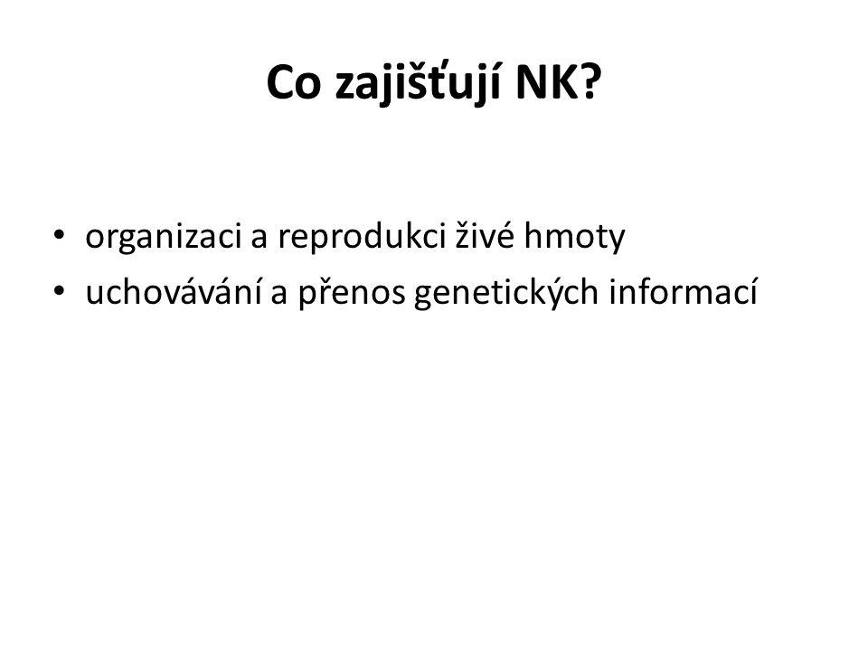 Co zajišťují NK organizaci a reprodukci živé hmoty