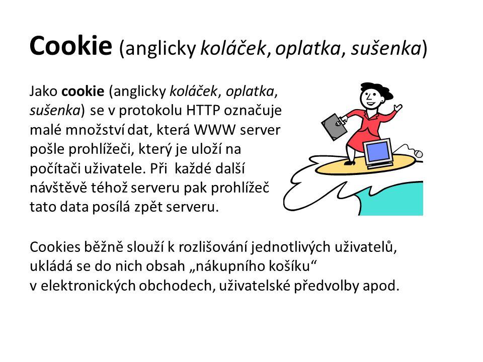 Cookie (anglicky koláček, oplatka, sušenka)