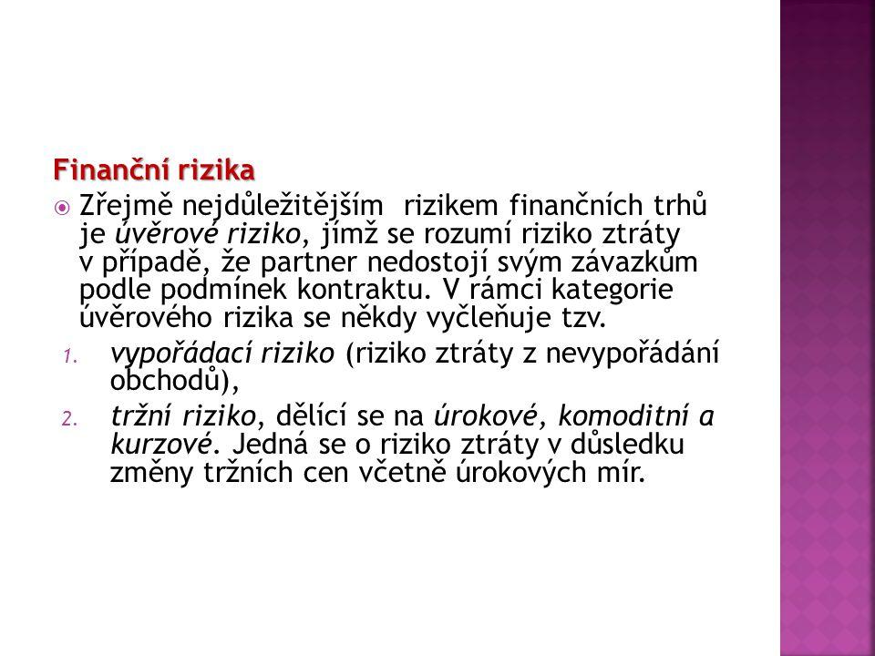 Finanční rizika
