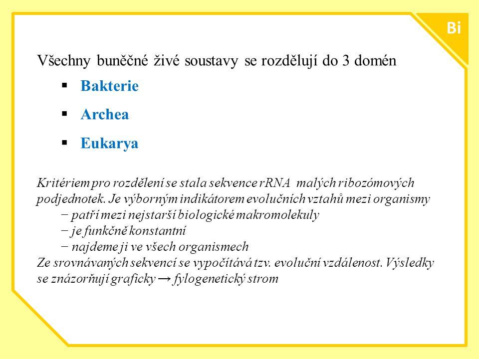 Bi Všechny buněčné živé soustavy se rozdělují do 3 domén Bakterie
