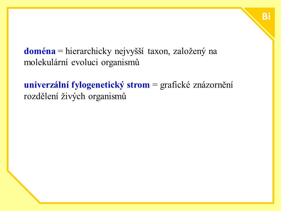 ttt1313 Bi. doména = hierarchicky nejvyšší taxon, založený na molekulární evoluci organismů.