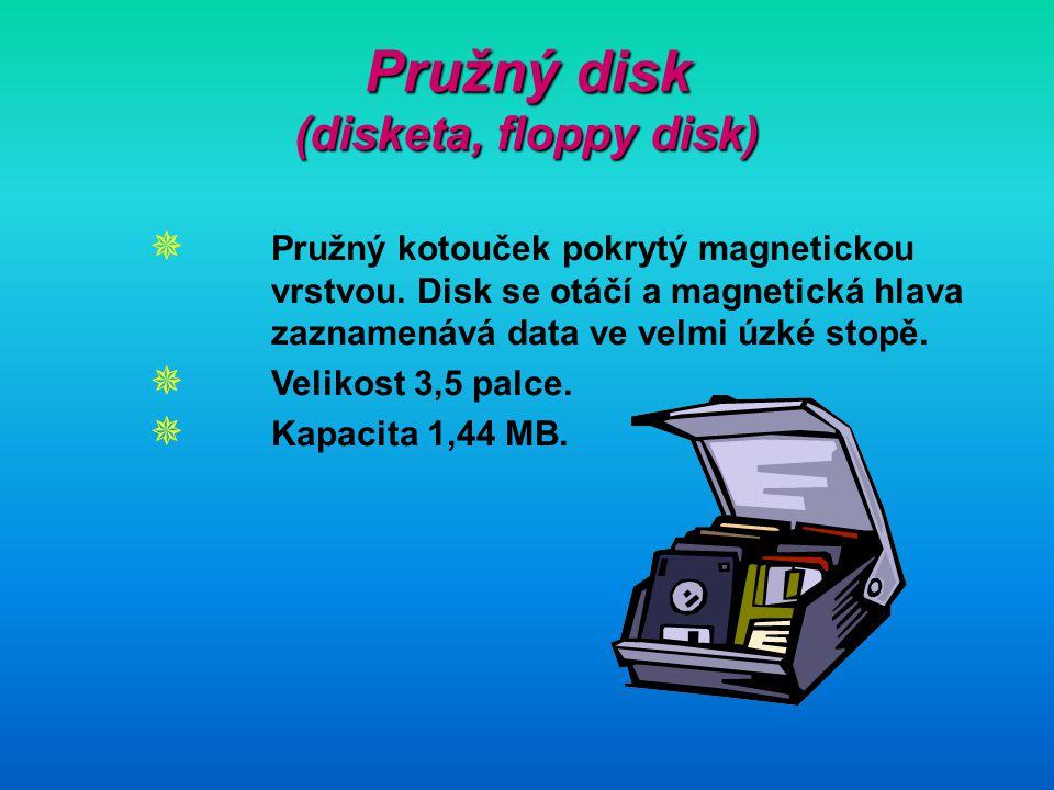 Pružný disk (disketa, floppy disk)