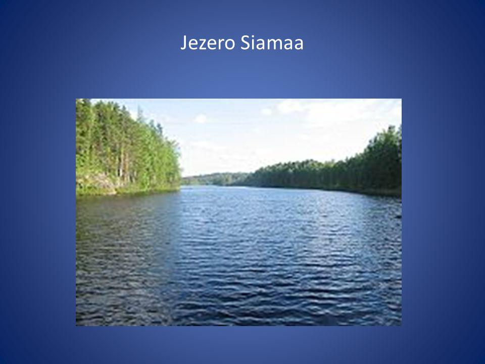 Jezero Siamaa