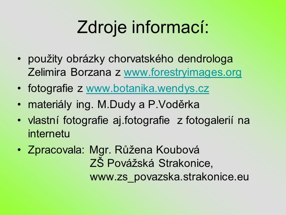 Zdroje informací: použity obrázky chorvatského dendrologa Zelimira Borzana z www.forestryimages.org.