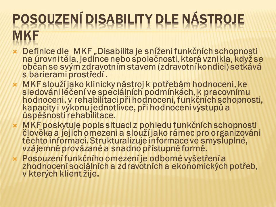 Posouzení disability dle nástroje MKF