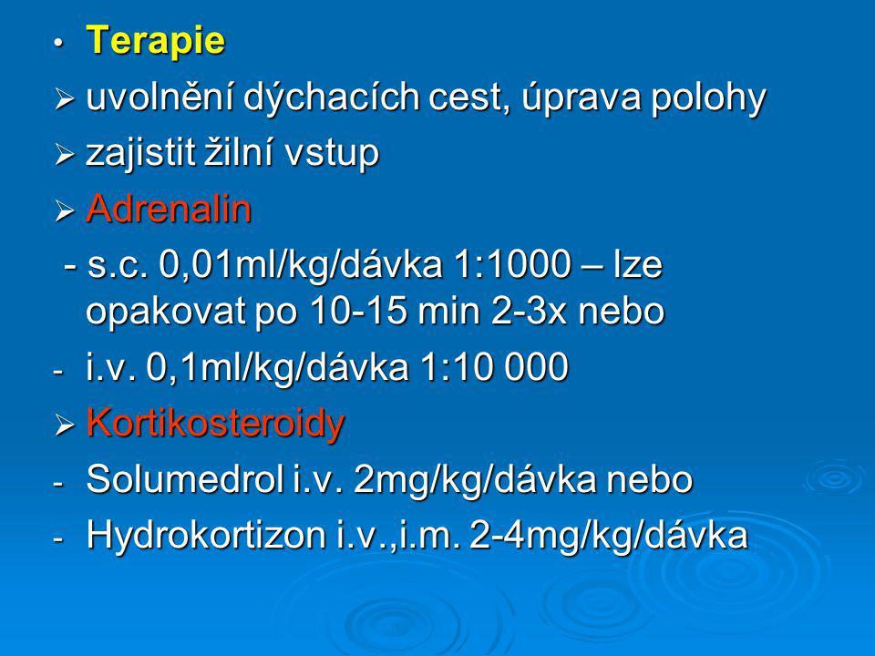 Terapie uvolnění dýchacích cest, úprava polohy. zajistit žilní vstup. Adrenalin.