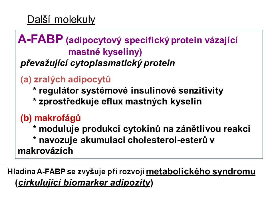 Další molekuly A-FABP (adipocytový specifický protein vázající mastné kyseliny) převažující cytoplasmatický protein.