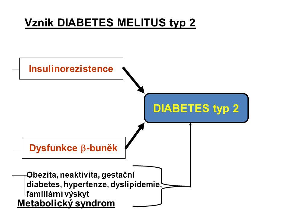 Vznik DIABETES MELITUS typ 2