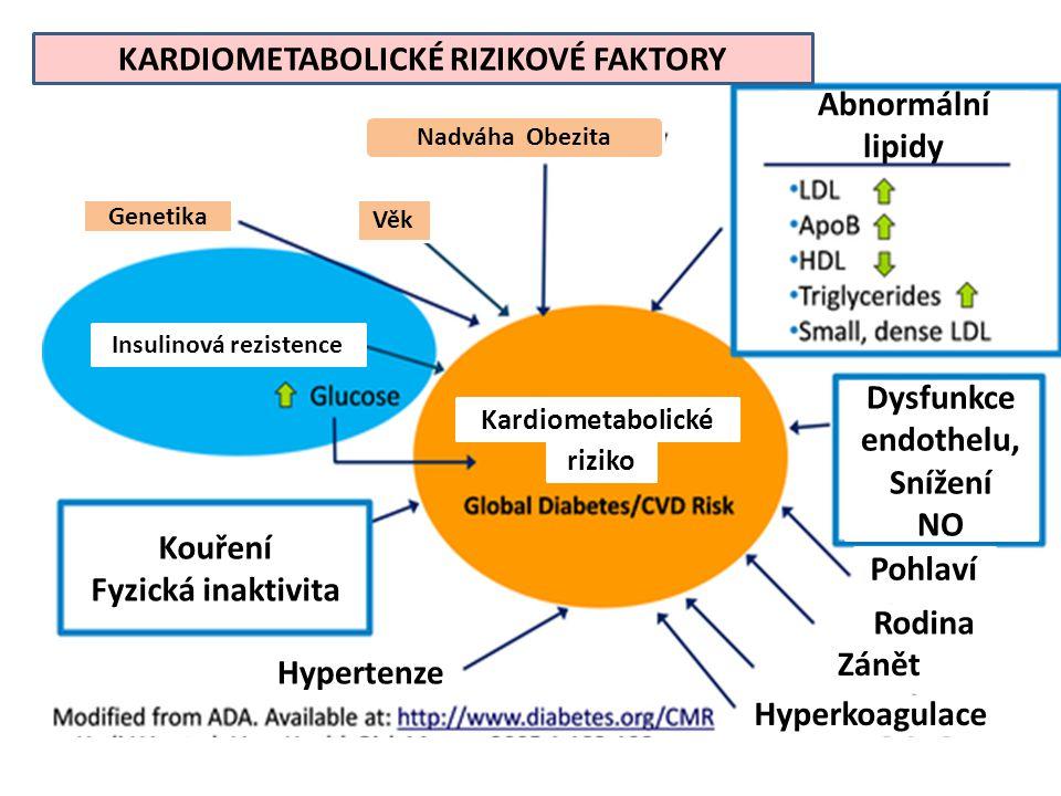 KARDIOMETABOLICKÉ RIZIKOVÉ FAKTORY Abnormální lipidy