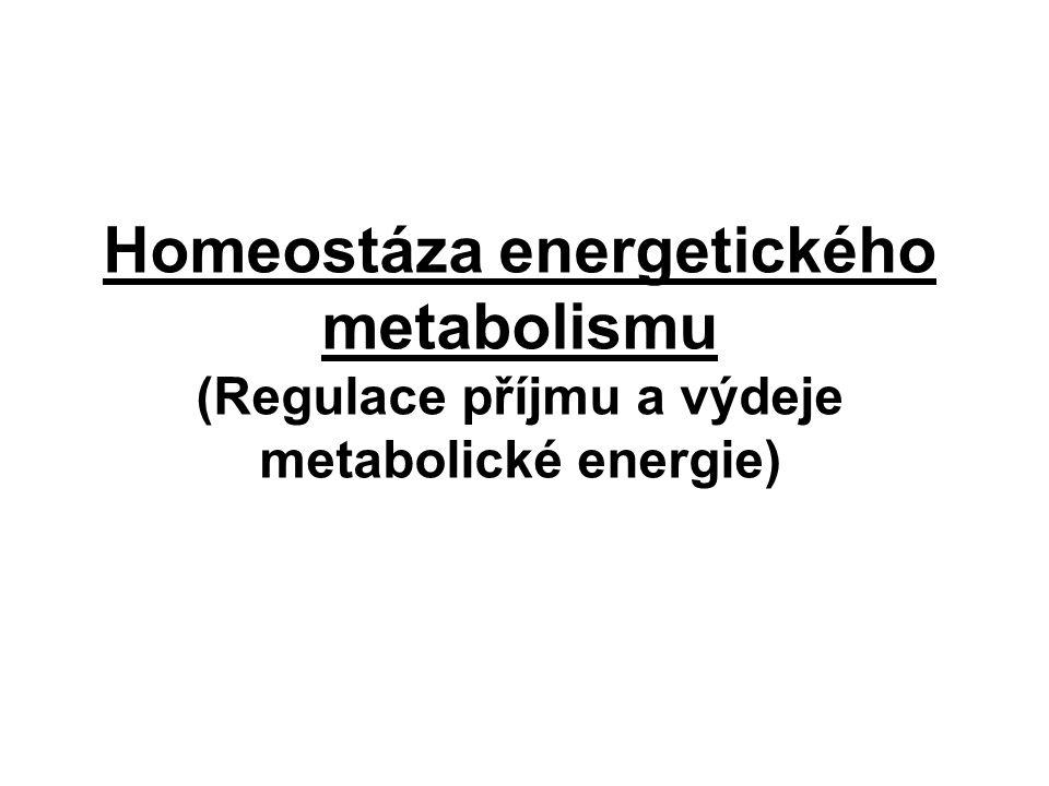 Homeostáza energetického metabolismu