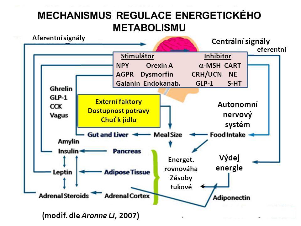 MECHANISMUS REGULACE ENERGETICKÉHO METABOLISMU