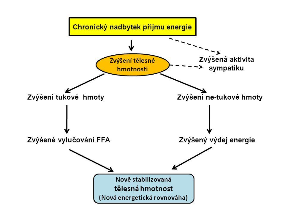 Chronický nadbytek příjmu energie