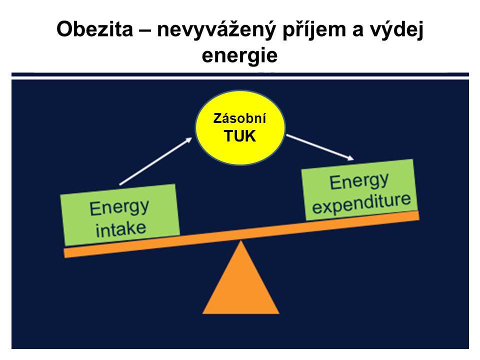 Obezita – nevyvážený příjem a výdej energie