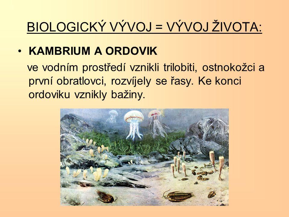 BIOLOGICKÝ VÝVOJ = VÝVOJ ŽIVOTA: