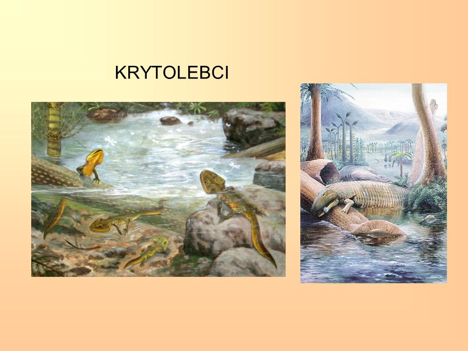 KRYTOLEBCI