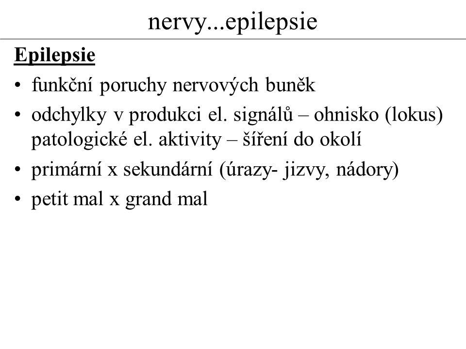 nervy...epilepsie Epilepsie funkční poruchy nervových buněk