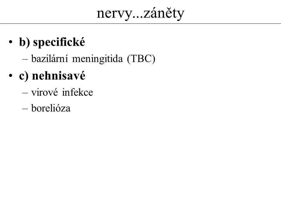 nervy...záněty b) specifické c) nehnisavé bazilární meningitida (TBC)
