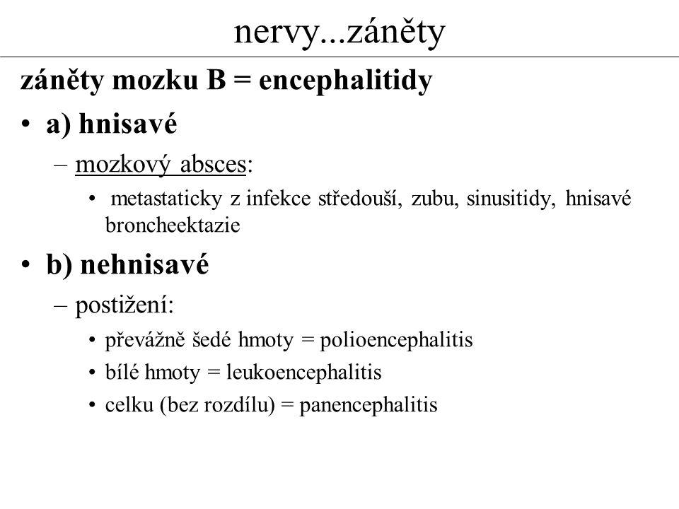 nervy...záněty záněty mozku B = encephalitidy a) hnisavé b) nehnisavé