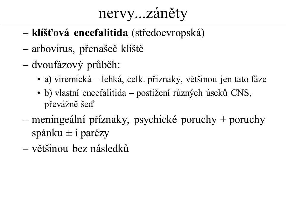 nervy...záněty klíšťová encefalitida (středoevropská)