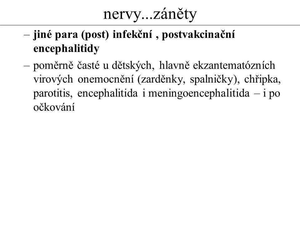 nervy...záněty jiné para (post) infekční , postvakcinační encephalitidy.