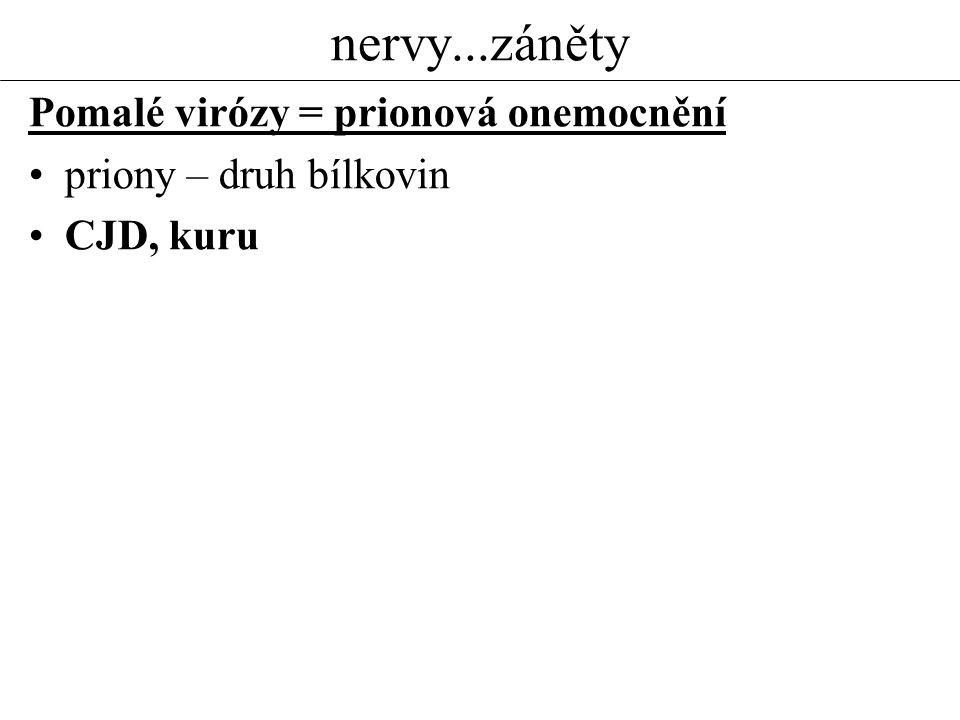 nervy...záněty Pomalé virózy = prionová onemocnění