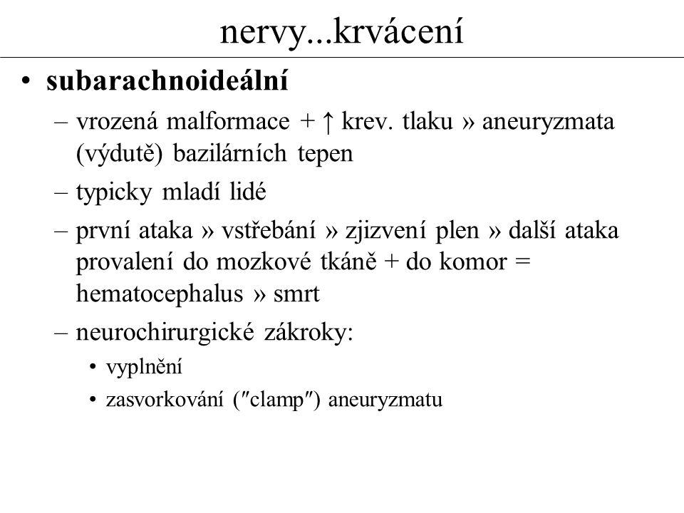 nervy...krvácení subarachnoideální