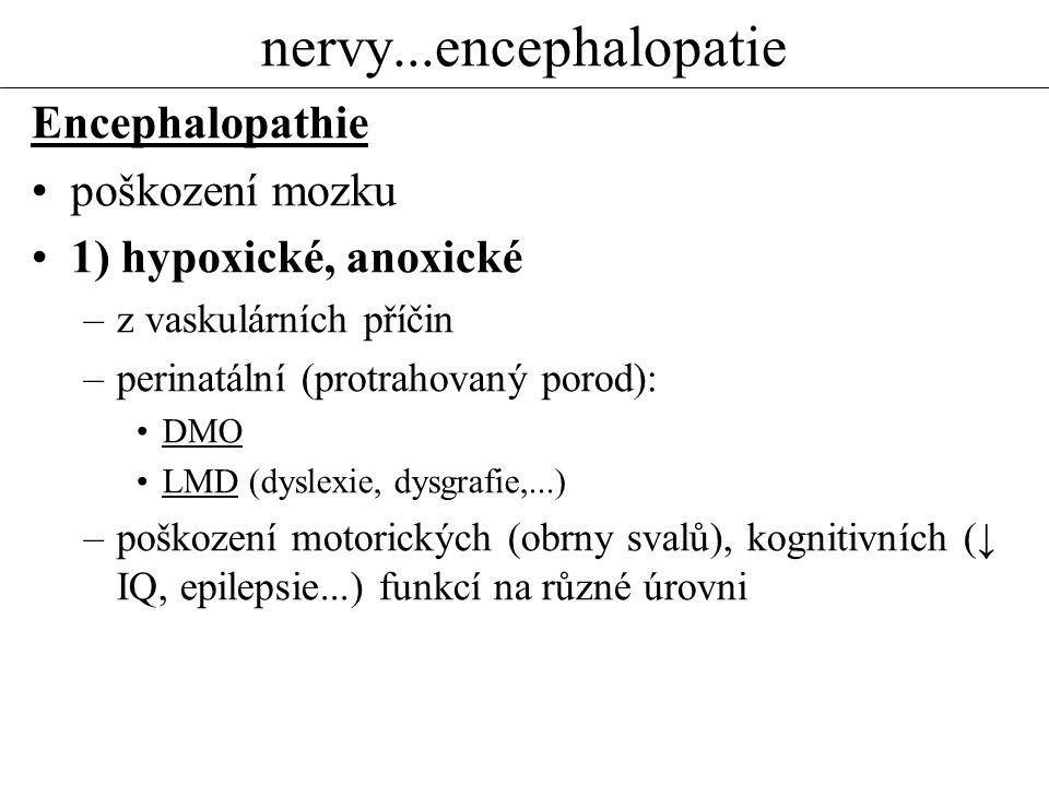 nervy...encephalopatie Encephalopathie poškození mozku