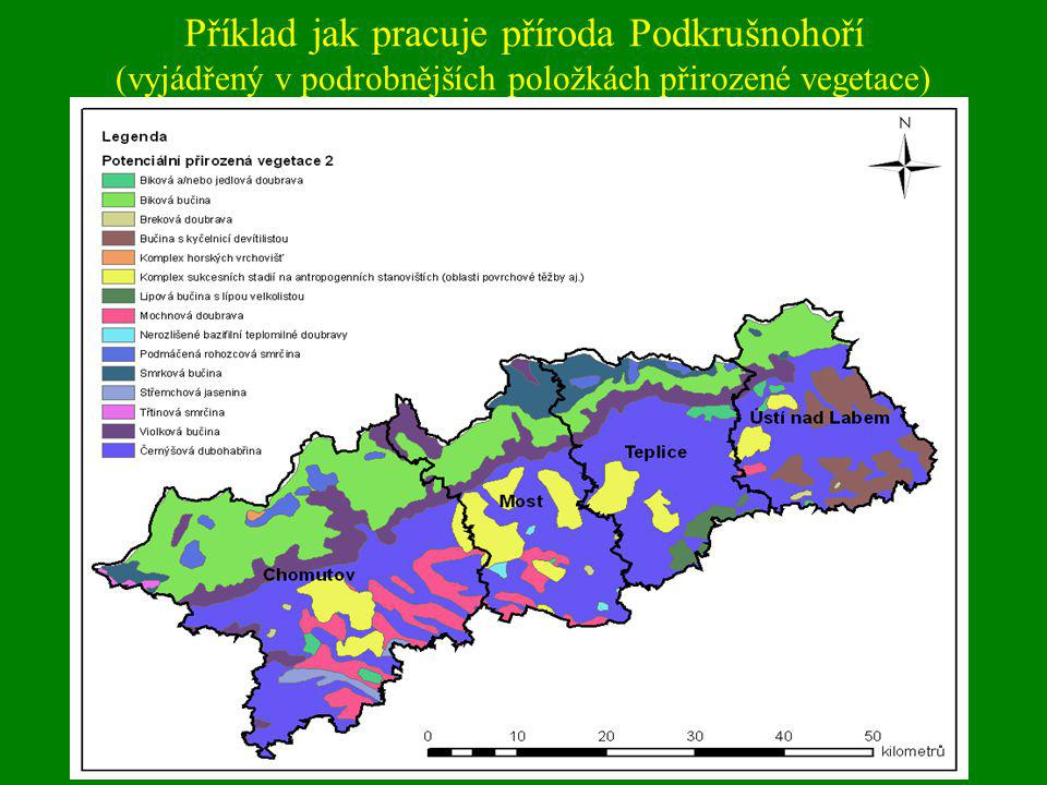 Příklad jak pracuje příroda Podkrušnohoří (vyjádřený v podrobnějších položkách přirozené vegetace)